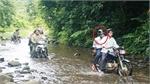 Bắt khẩn cấp nguyên Giám đốc Ban Quản lý rừng phòng hộ Sông Tranh