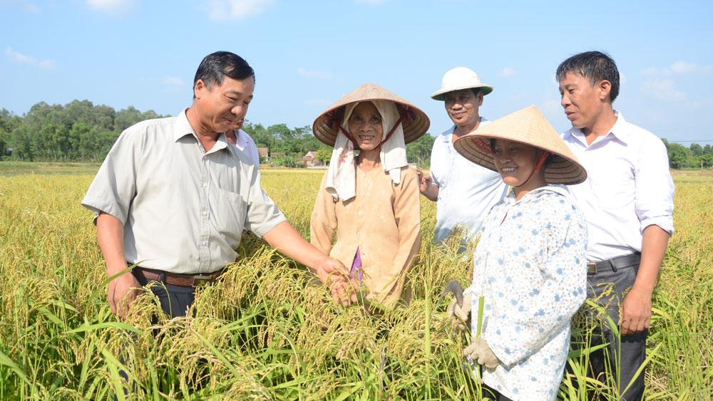 Đảng viên nông thôn làm kinh tế: Kỳ I - Gương mẫu đi đầu, làm giàu chính đáng