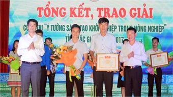 Bo khai vegetable cultivating model branched out in Bac Giang