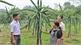 Công tác Dân vận ở huyện Yên Thế: Tạo đồng thuận vì lợi ích chung