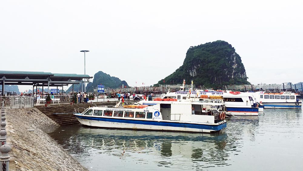 Tổng kiểm tra việc thực hiện quy hoạch cảng, bến thủy nội địa