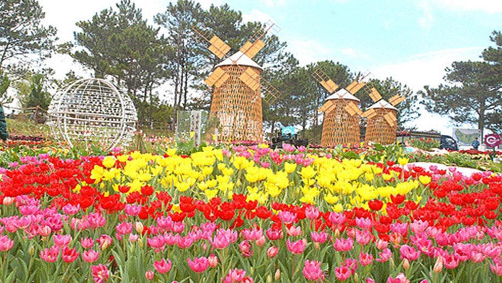 Festival hoa Đà Lạt lần thứ 7 được khai mạc vào 23-12