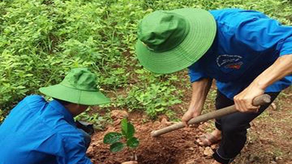 Lục Ngạn: Hỗ trợ cây giống cho thanh niên nghèo
