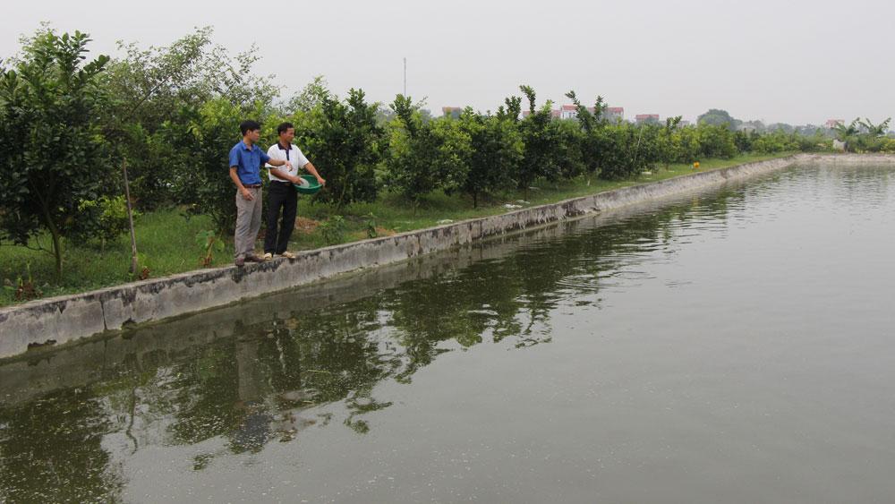 Người nuôi trồng thủy sản chưa mặn mà với quy trình VietGAP