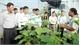 Bí thư Tỉnh ủy Bùi Văn Hải: Tích cực hỗ trợ nông dân phát triển sản xuất nông nghiệp CNC