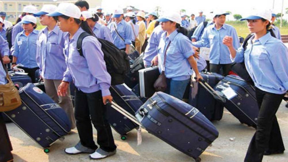 Hơn 2.500 lao động đi làm việc có thời hạn ở nước ngoài
