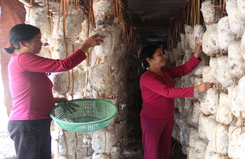 """Phụ nữ Lạng Giang duy trì hơn 120 """"tổ phụ nữ tiết kiệm""""."""