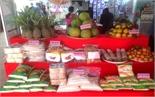 Bắc Giang trưng bày nông sản đặc trưng và sản phẩm làng nghề