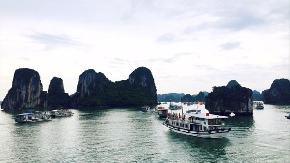 Quảng Ninh siết chặt tour không đồng