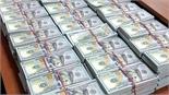 Sự thật vụ thu giữ 1,5 tấn tiền mặt tại nhà quan chức chống tham nhũng Nga