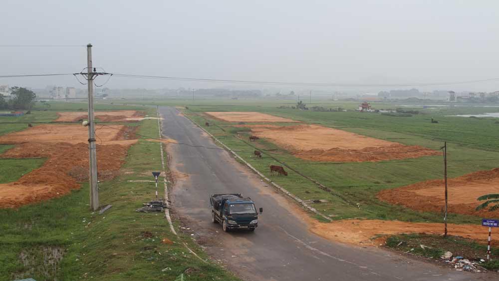 Phê duyệt phương án bồi thường, giải phóng mặt bằng dự án xây dựng khu dân cư đường Nguyễn Thế Nho