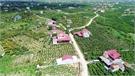 Lục Ngạn: Mùa quả ngọt cuối năm
