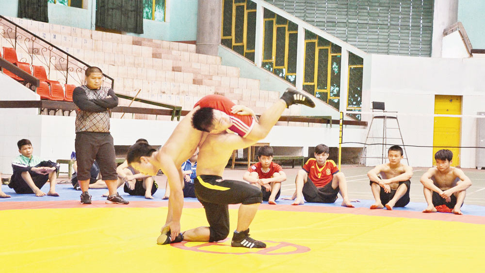 Bac Giang reforms high-performance sports to keep up with trend