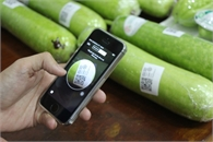 Tăng tốc phát triển cho thương mại điện tử - Những khó khăn cần tháo gỡ