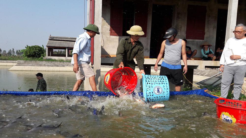 Yên Dũng: Diện tích nuôi trồng thủy sản đạt gần 93 % kế hoạch