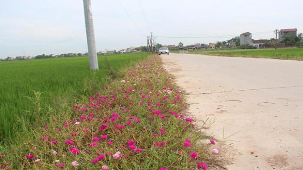 Cứng hóa thêm 24 km đường giao thông nông thôn