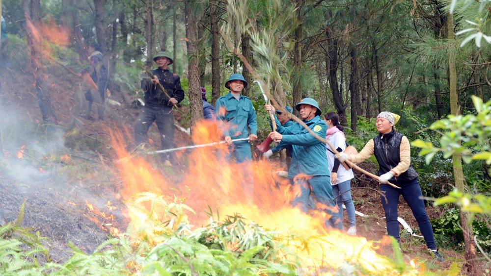 Diễn tập chữa cháy rừng tại xã Nham Sơn