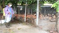 Bắc Giang tập trung chống rét, bảo vệ đàn vật nuôi