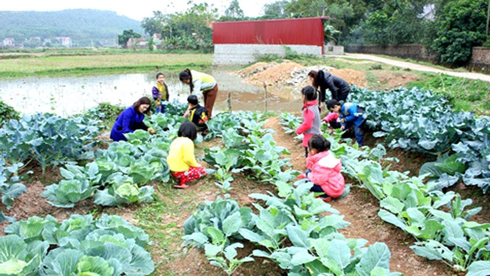Các trường mầm non ở Yên Dũng đáp ứng 90% nhu cầu rau sạch cho trẻ