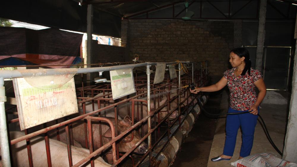 Tăng cường các biện pháp phòng chống đói rét cho đàn vật nuôi, thuỷ sản