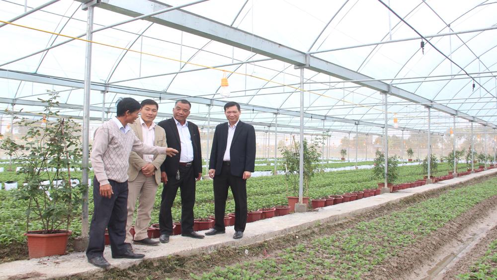 Hiệp Hòa hỗ trợ các mô hình sản xuất nông nghiệp công nghệ cao