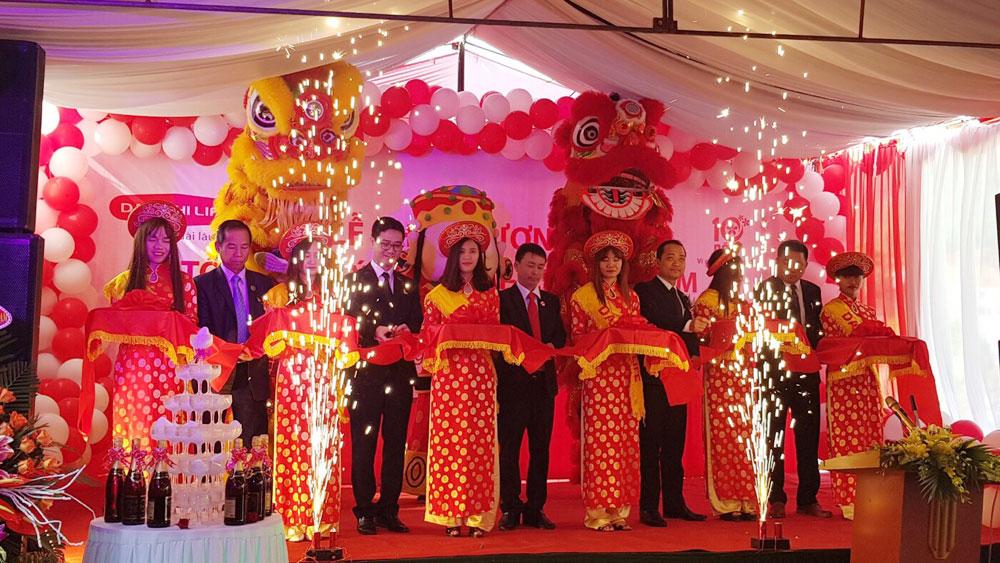 Khai trương Văn phòng Tổng Đại lý Công ty BHNT Dai-ichi Việt Nam tại Sơn Động