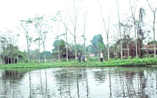 Yên Thế sản lượng thủy sản tăng 37,7%