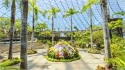 Vườn Hanakairo không chỉ có hoa xô thơm