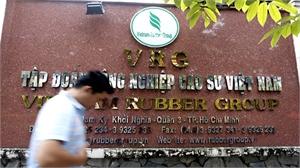 Khởi tố 5 bị can trong vụ án tại Tập đoàn Công nghiệp Cao su Việt Nam