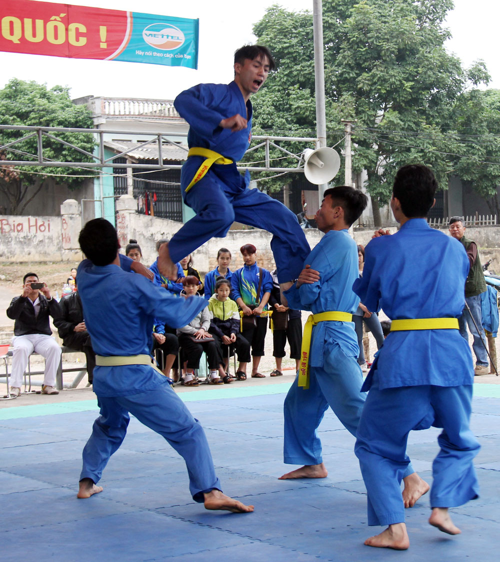 Development prospects, Bac Giang province, Vovinam, amateur playing fields, high-performance, sport competitions, traditional martial art, physical exercise