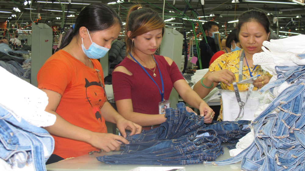 Bac Giang's exports on the rise