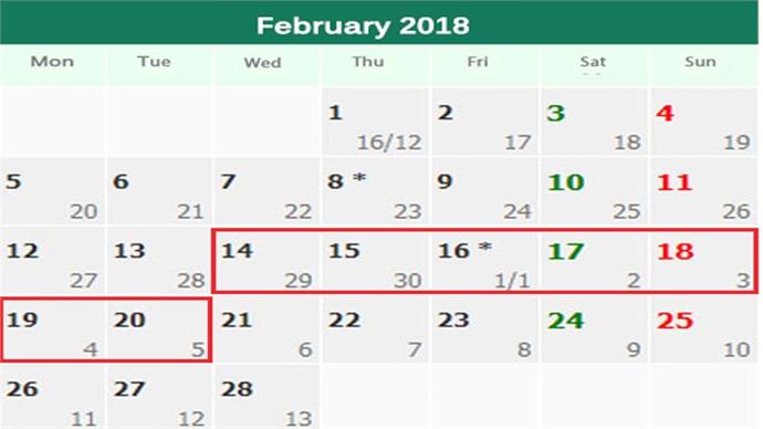 Vietnam to kick off Lunar New Year break on Valentine's Day