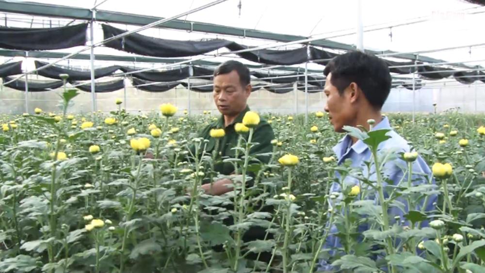 """Chương trình """"Làng lúa làng hoa""""- Cầu nối chuyển giao tiến bộ khoa học kỹ thuật hữu hiệu"""