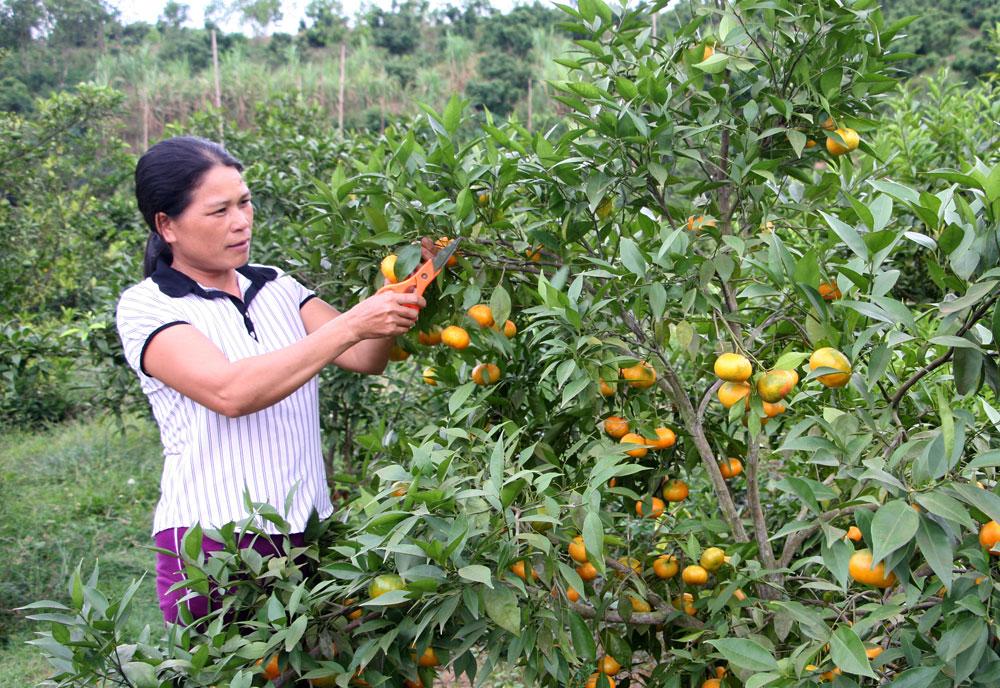 Kim Sơn: Lồng ghép nguồn lực, cải thiện đời sống nhân dân
