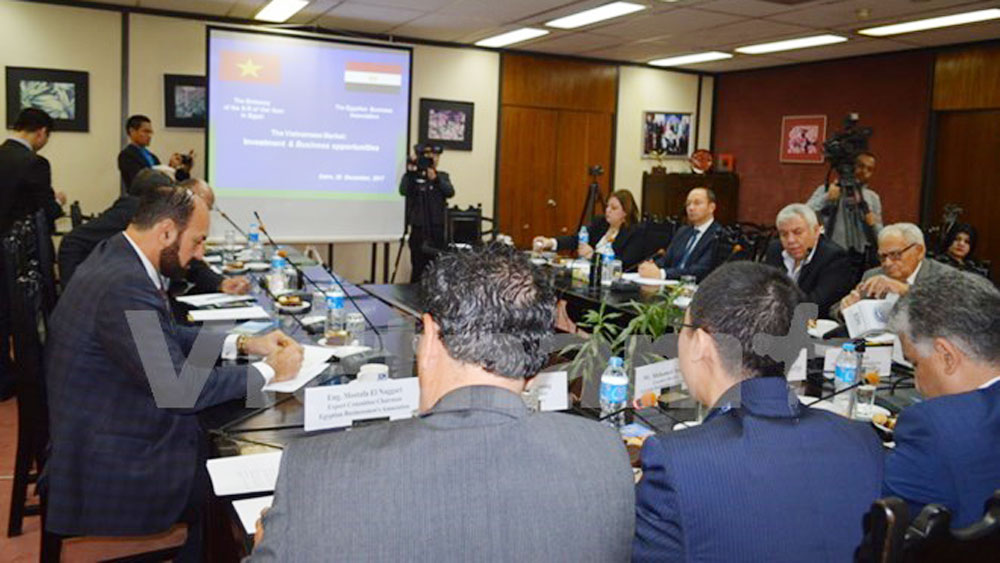 Egyptian firms updated on Vietnam's investment policy