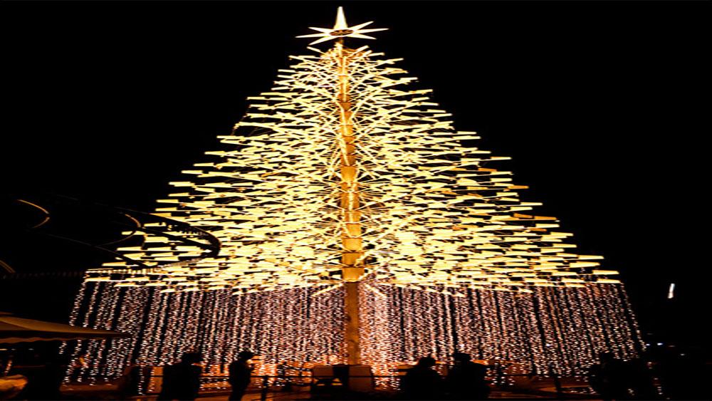 Đà Nẵng thắp sáng cây thông Noel cao nhất Việt Nam