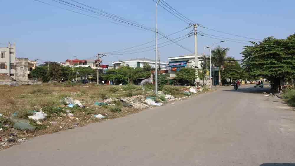 Rác thải bủa vây chợ Cầu Chui