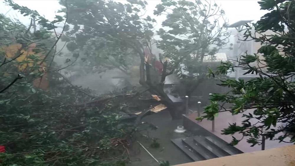 Bão Tembin băng qua quần đảo Trường Sa, 90% cây cối bị gãy đổ