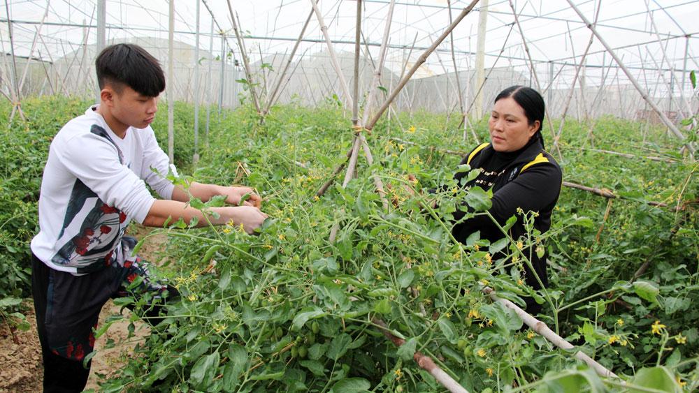Nghiệm thu 16 mô hình nông nghiệp công nghệ cao