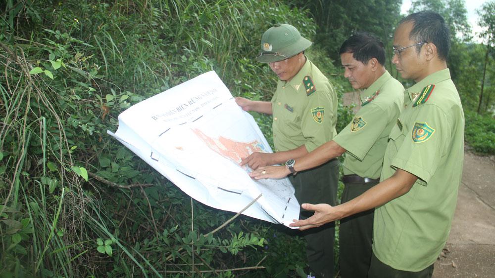Chung tay bảo vệ rừng