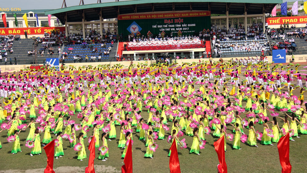 Glorious year of Bac Giang sports