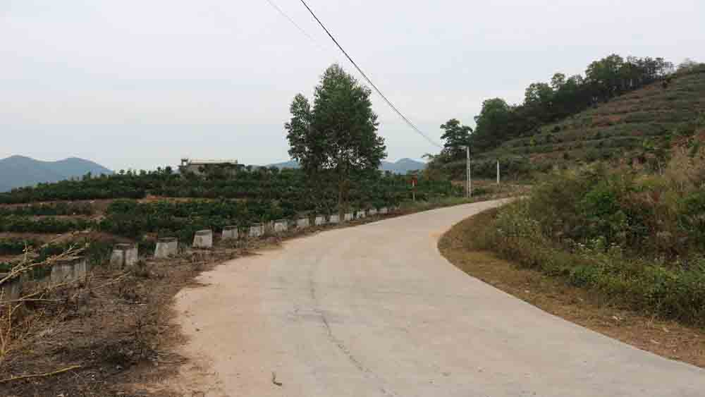 Lục Nam: Hỗ trợ 8 tỷ đồng để cứng hóa đường giao thông nông thôn