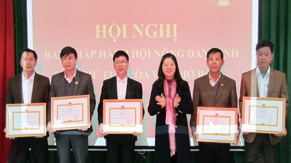 Hội Nông dân, Bắc Giang,  triển khai, nhiệm vụ năm 2018, Chỉ đạo, thành công,  đại hội hội nông dân các cấp