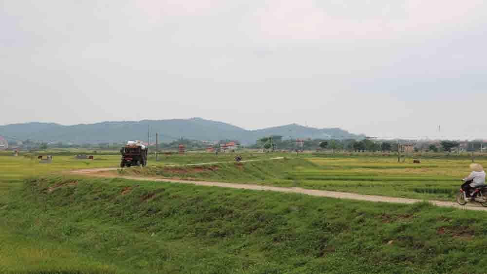 Lục Nam: Hỗ trợ 3 triệu đồng/trường hợp hỏa táng