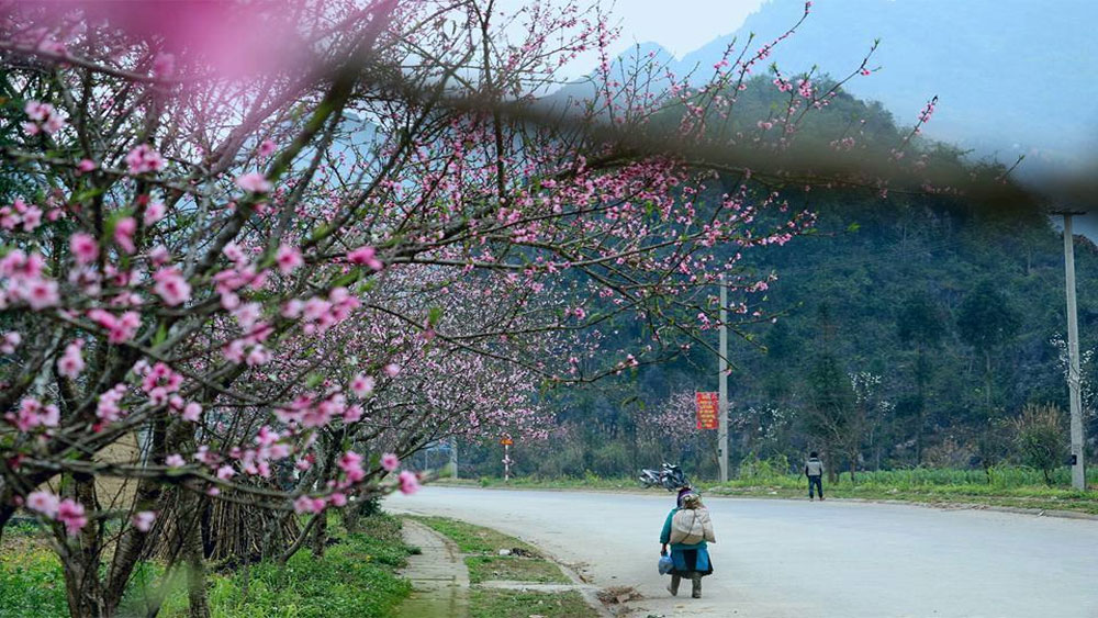 Hà Giang tập trung phát triển sản phẩm du lịch đặc thù