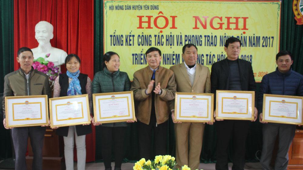 Yên Dũng có gần 11.600 hộ nông dân đạt danh hiệu sản xuất, kinh doanh giỏi