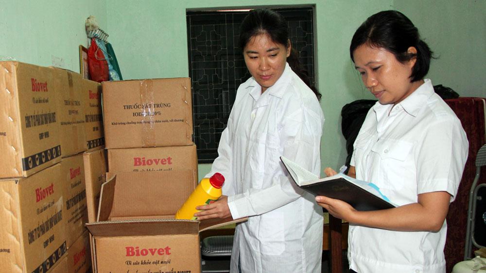 Khống chế kịp thời ổ bệnh lở mồm, long móng tại Bắc Giang