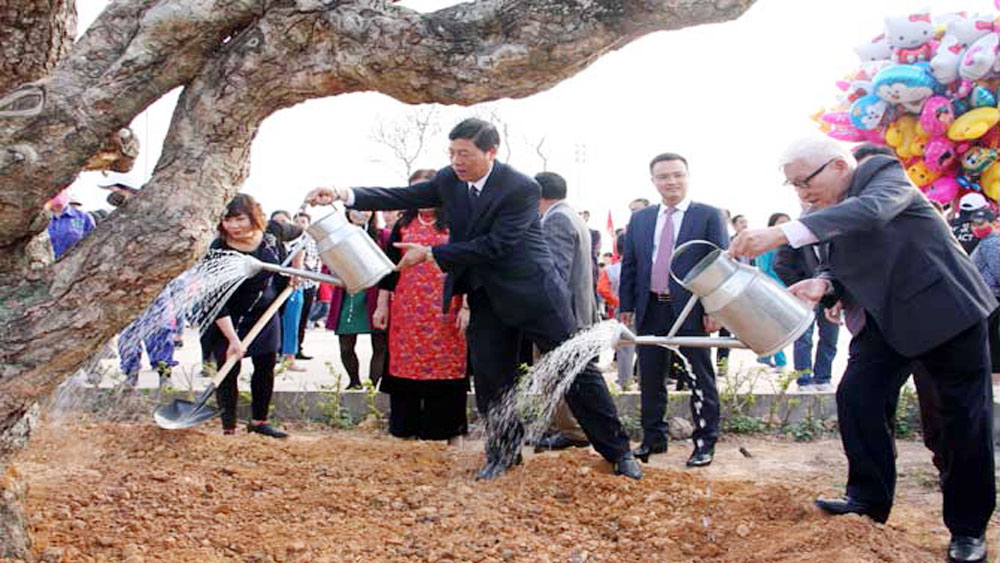 Bac Giang launches tree planting festival 2018