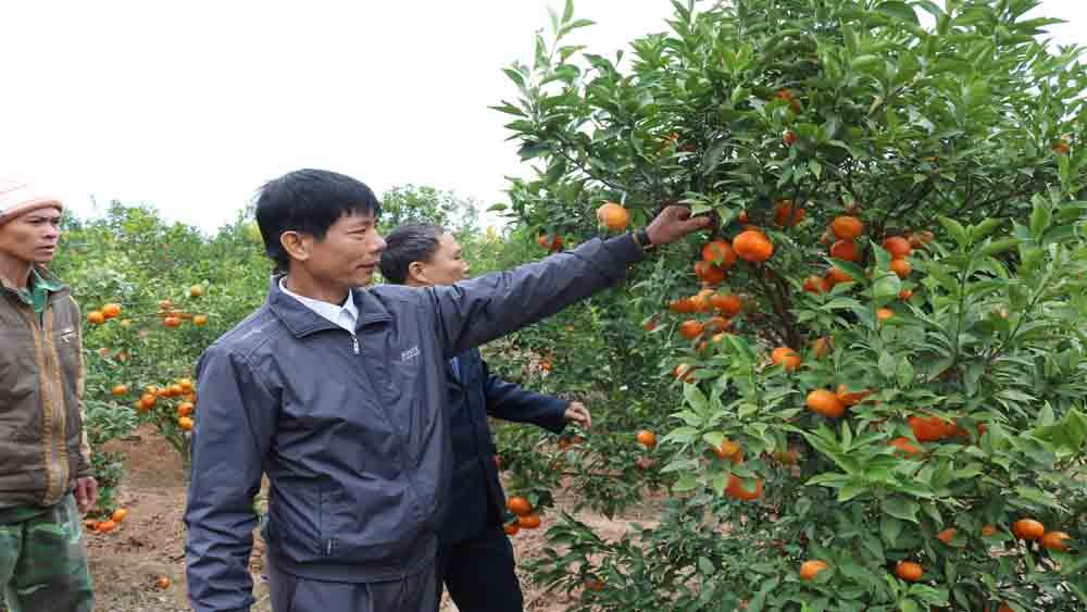 Huyện ủy Lục Nam đẩy mạnh công tác luân chuyển cán bộ năm 2018