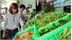 Bảo đảm vệ sinh an toàn thực phẩm: Chú trọng chợ và thức ăn đường phố